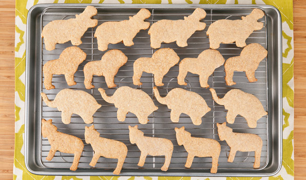 in the kitchen with stefano faita stefano's animal crackers displayed on a baking rack